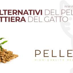 Usi alternativi del pellet - La lettiera del gatto