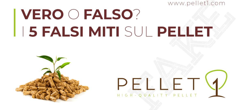 PELLET1 - i falsi miti sul pellet