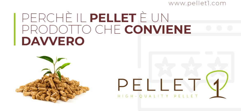 Pellet1_fb_blog_pellet_conviene