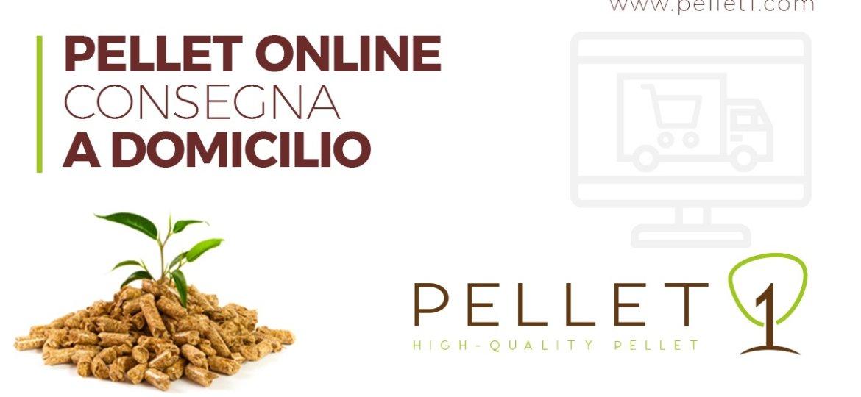 2020-01-21-blog-pellet-online-consegna-a-domicilio-pellet1