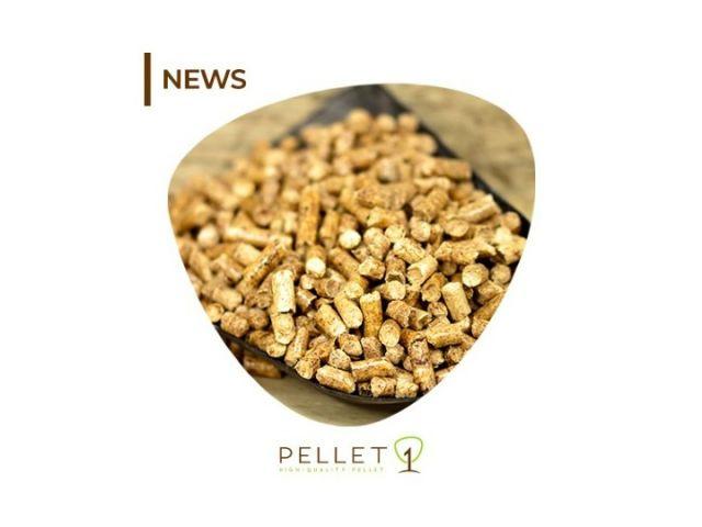 prestagionale offerte bancali di pellet